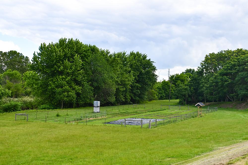 Jackson Park Community Garden Canton Parks & Rec