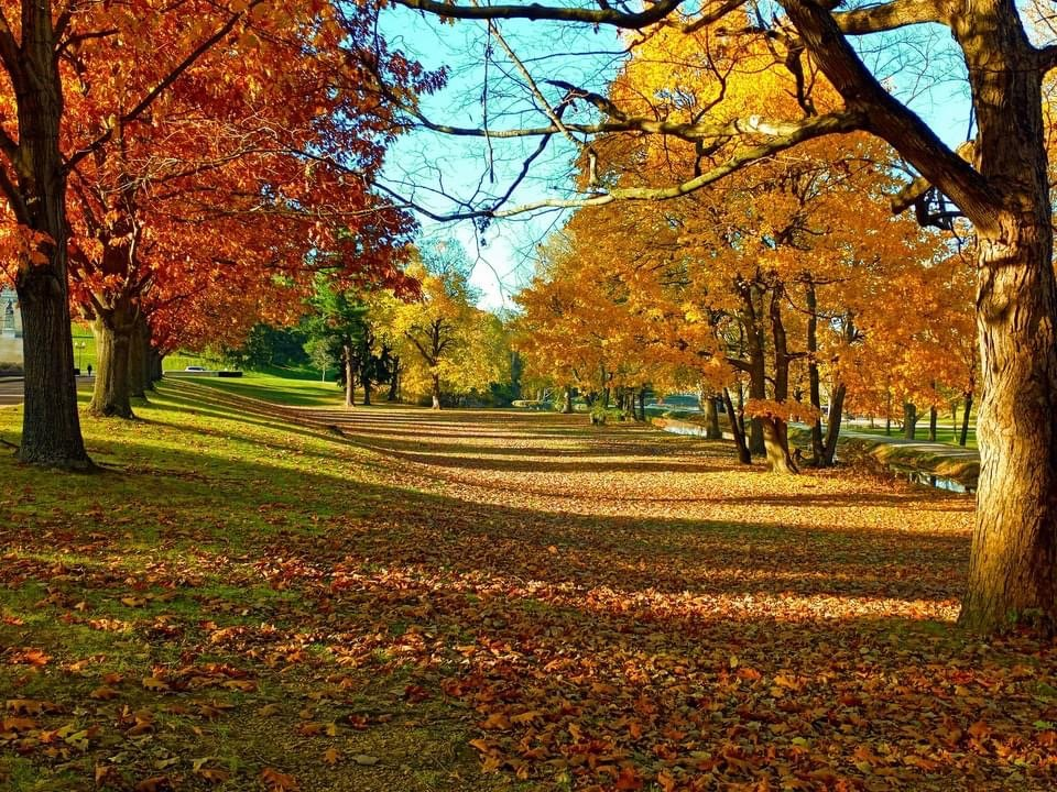 Monument Park Autumn by Doug Froelich