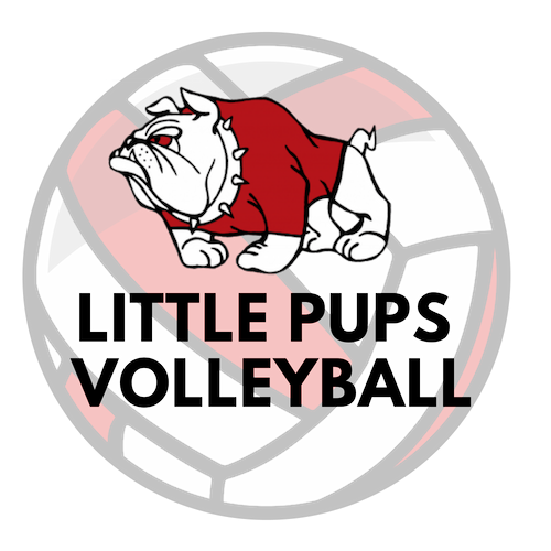 Little Pups Volleyball Canton Parks & Recreaetion